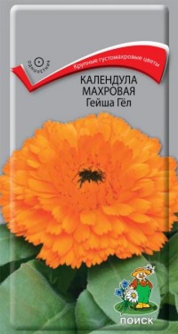 календула махровая Гейша Гел