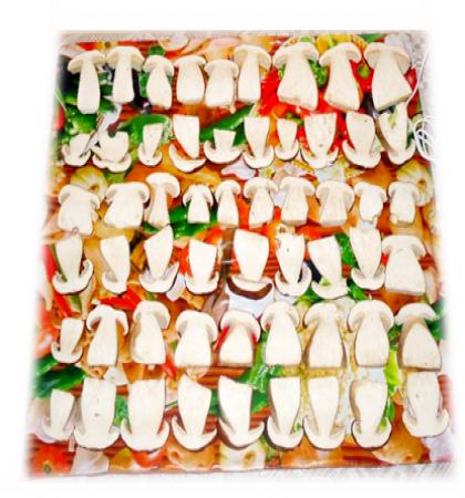 """Электросушилка """"Самобранка"""" для фруктов, овощей, грибов (50*50см)"""