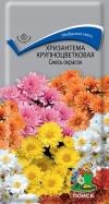 Хризантема крупноцветковая Смесь окрасок