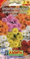 Хризантема корейская Бархатная Осень, смесь окрасок