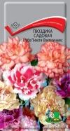 гвоздика садовая Шабо Пикоти микс