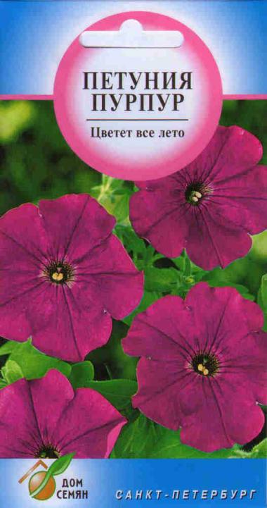 Петуния Пурпур