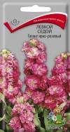 левкой седой Гигант ярко-розовый