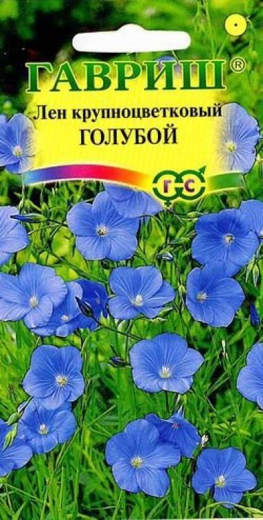 Лен Голубой , крупноцветковый