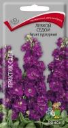 левкой седой Гигант пурпурный