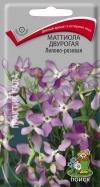 маттиола двурогая Лилово-розовая