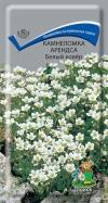 Камнеломка Арендса Белый ковер