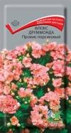 Флокс друммонда Промис персиковый