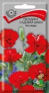 гвоздика садовая Шабо Кассандра
