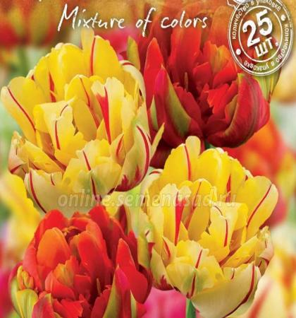 """Тюльпаны махровые """"Весенний фейерверк"""" смесь окрасок"""